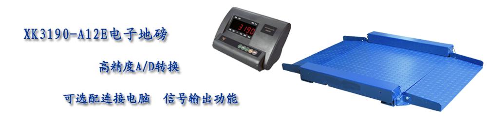 XK3190-A12E电子地磅