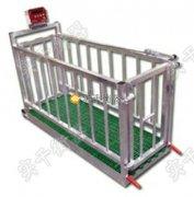 3000公斤带围栏牲畜秤维修